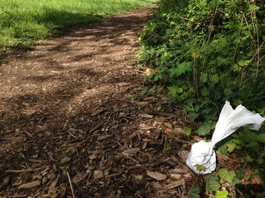 A lonely bagged dog poop on the side of the trail at Orchard Heights Park in West Salem.