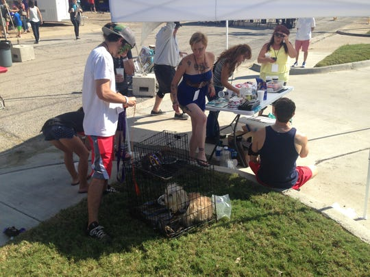 Dogs and volunteers frolic to music and seek shade at the Pet Savers tent at Herby-K's Sunday.