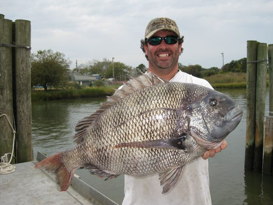 10-08-14 David Walker with record sheepshead.jpg
