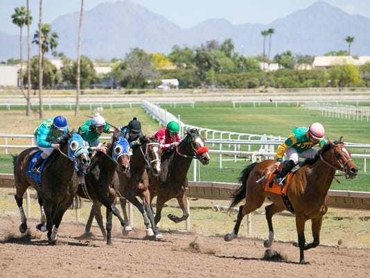 Horses race at Turf Paradise