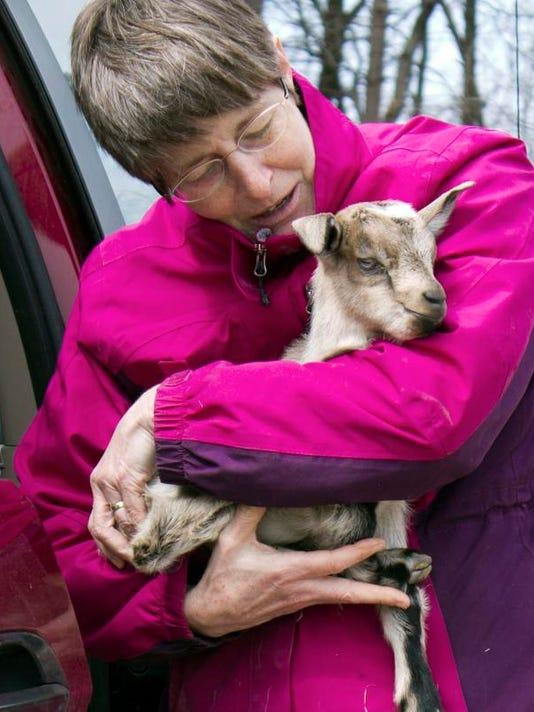 Goat Collaborative