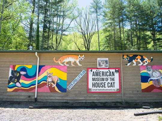 American Museum Of The House Cat Opens In Sylva