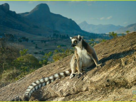 Island of Lemurs art.jpg