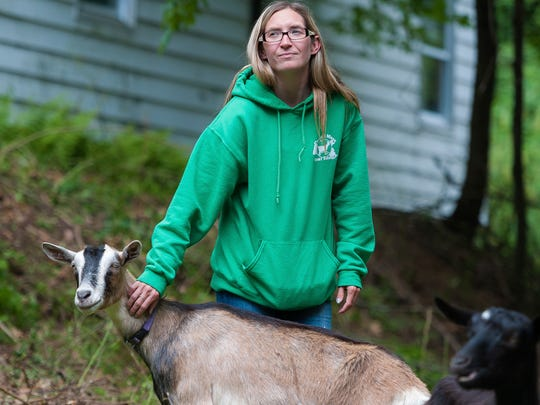 Jenna Sherwood from Central Mass Goat Rentals tends to one of the goats at a job site in Fitchburg, Mass. Ten goats ate the overgrown weeds and vegetation from cut branches in seven days.