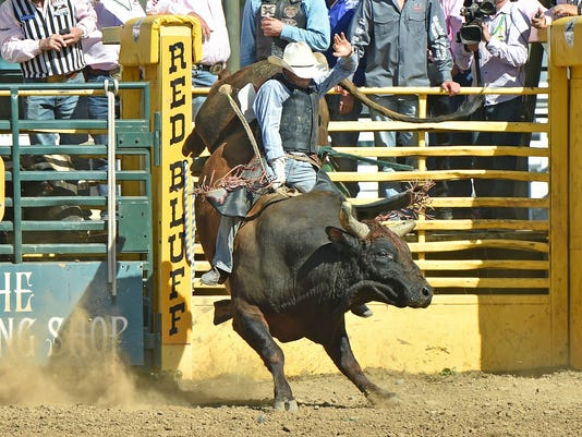 636202834157454655-Bayle-Worden-Bull-Riding-winner-2-.jpg