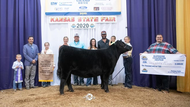MLA Proven Queen 902 won supreme champion over all breeds and grand champion female at the 2020 Kansas State Fair Junior Angus Show from Sept. 12-13 in Hutchinson. Dakota Allen, Ottawa, owns the April 2019 daughter of Colburn Primo 5153. Shane Meier, of Stonewall, Texas, evaluated the 46 entries.