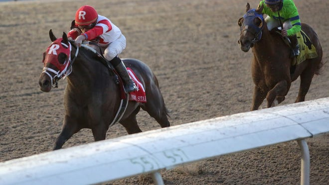 Ken Ramsey's International Star, with jockey Miguel Mena, captured the Fair Grounds' Jan. 17 Lecomte by 2 1/2 lengths over War Story. They met again in the Risen Star.