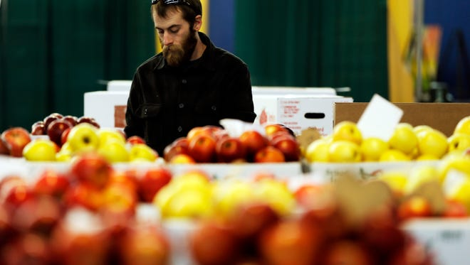 Milton Knouse of Knouse Fruitlands organizes his apples Thursday, Jan. 7, 2016, at the Farm Show complex in Harrisburg, Pa.  Starting Saturday, thousands of visitors are expected to descend on the state capital for the 100th Pennsylvania Farm Show, a weeklong celebration agriculture and rural life.  (AP Photo/Matt Rourke)
