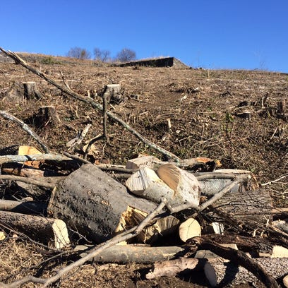 A pile of stumps sits at the bottom of Fort Negley