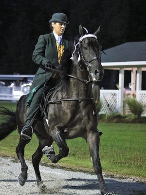 The Mid-South Horse Show Association hosted the 31st Annual Mid-South Charity Walking Horse Show at the Pugh Bourne Park, 343 Oakfield Road, in Jackson on Saturday, July 14, 2018 to benefit Youth Town of West Tennessee.
