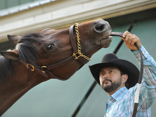 Preakness contenders work out at Pimlico for first time Thursday
