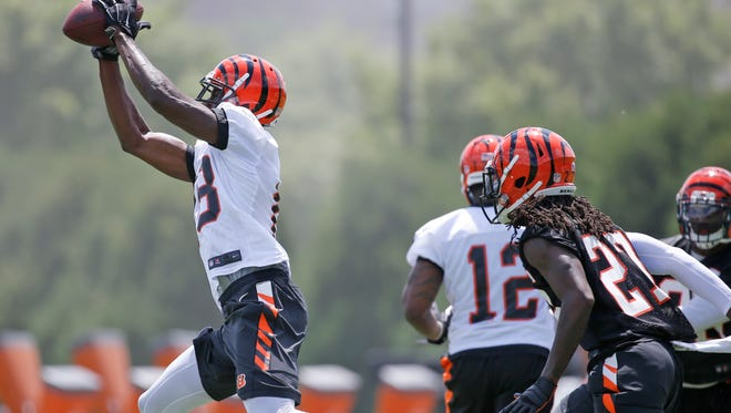 Bengals wide receiver A.J. Green stretches to catch a pass during drills at organized team activities Tuesday.