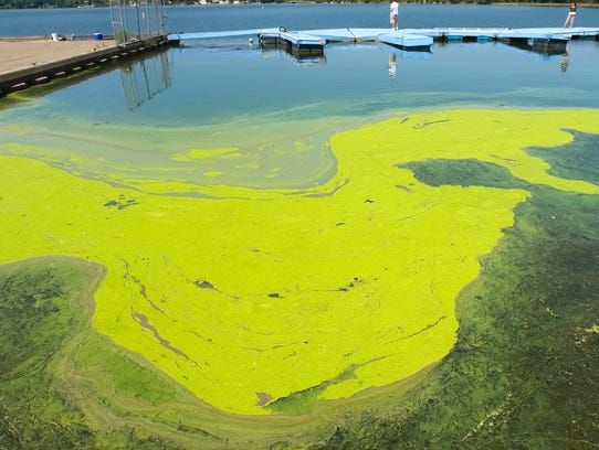 A patch of algae lies behind a breakwater and a dock