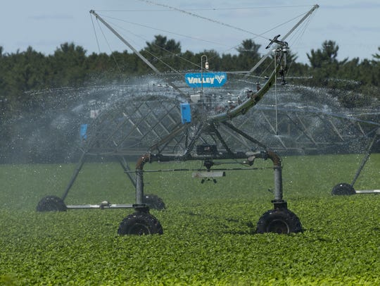 An irrigation system waters crops in Coloma, in the