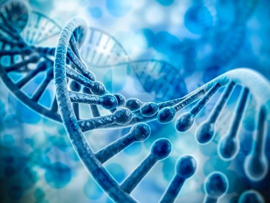 3d DNA