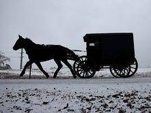 Amish Kitchen: Lovina to visit B.C. for book signing