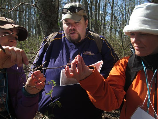 636548151944317445-Smokies-Phenology-Volunteers-Collect-Tree-Phenology-Data.jpg