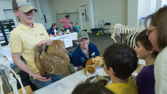 At last year's James L. Voss Veterinary Teaching Hospital open house, a veterinary student shows an intestinal model to members of the public.