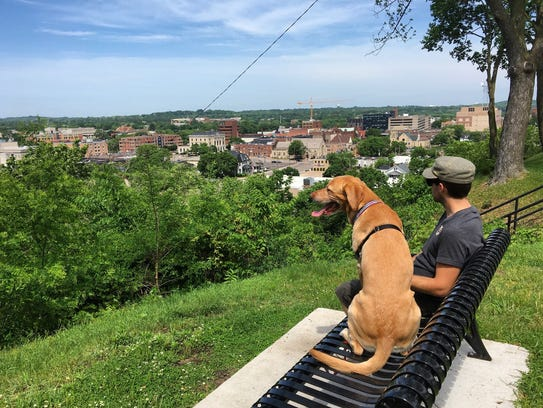 A man and his dog overlook downtown Eau Claire.