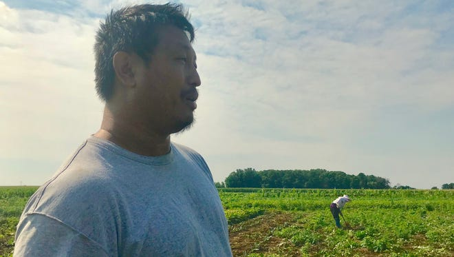 Vang Lee looks out over his family's plot of land on the Mequon Nature Preserve.