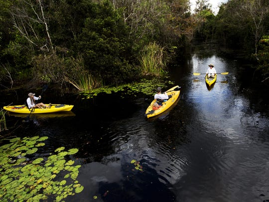 From left, Michelle Horne, Louis Bieler and Sharon Scott from the Miami area head south during a kayak trip on the Turner River. The river, which runs under Old U.S. 41, comes out near Chokoloskee and is only navigable certain times of the year depending on the amount of rainfall.