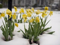 Spring weather forecast: When can we say 'farewell' to winter?