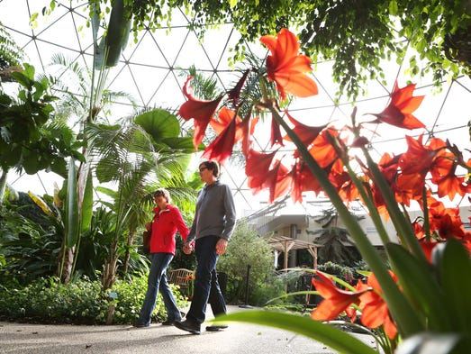 Mike Schoonover of Indianola and Lynn McBrian of Des Moines take a walk in the Great Des Moines Botanical Garden Monday Jan. 6, 2014.