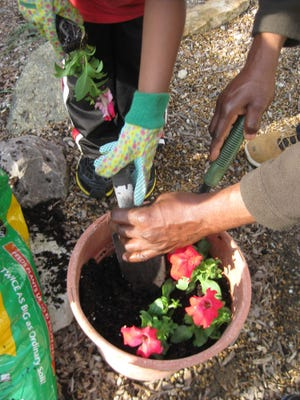 Container gardening is one of the Master Gardeners' classes next year.