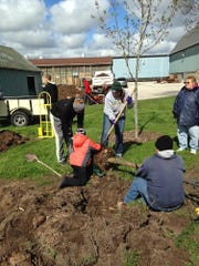 Inclement weather did not hinder the Sheboygan Falls Kiwanis Club as it restocked The Falls Tree Nursery earlier this month.