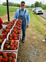 Bottom View Farm owner Ralph Cook hopes the weather
