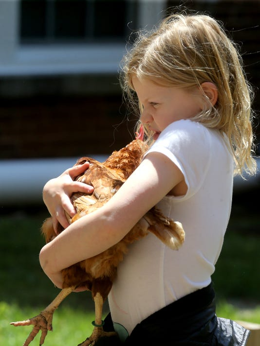 636289060055796102-7-kids-and-Chickens.JPG