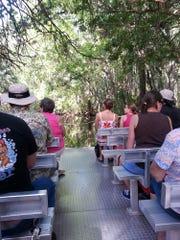 A pontoon boat transports visitors down Pepper Creek