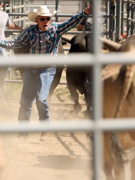 Growney-Rodeo-01.JPG