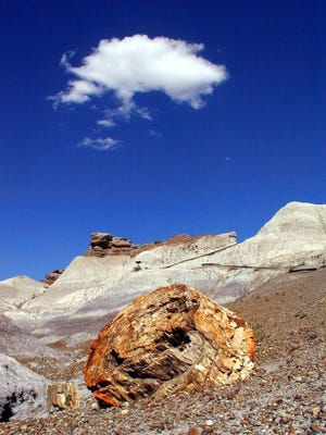 Part of the Blue Mesa Trail in the Petrified Forest National Park, Ariz.