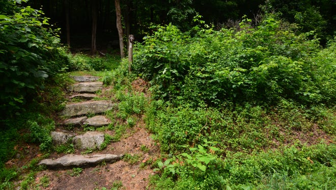 A set of stone steps off Hosner Mountain Road in Stormville indicates the start of the trail up the mountain.