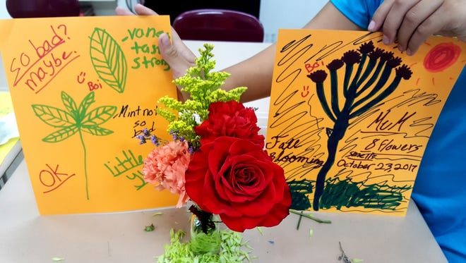 In The Garden Club, children engage in hands-on activities with purpose and meaning, learn about cycles of nature, seasonal rhythms, and feel safe to respond to an abundant supply of plant materials and life stages from seed to harvest, and from birth to maturity.