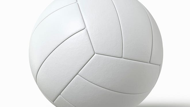 lh logo: volleyball