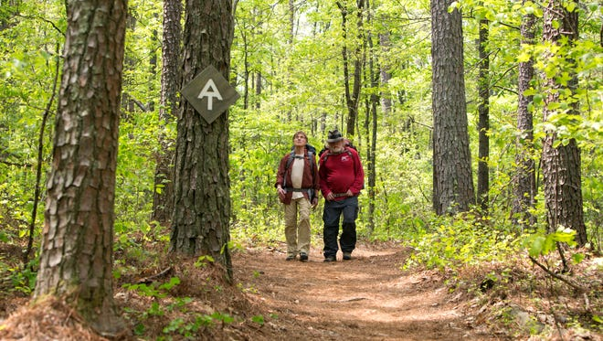 """Robert Redford stars as Bill Bryson and Nick Nolte as Stephen Katz hiking the Appalachian Trail in Broad Green Pictures upcoming release, """"A WALK IN THE WOODS."""""""