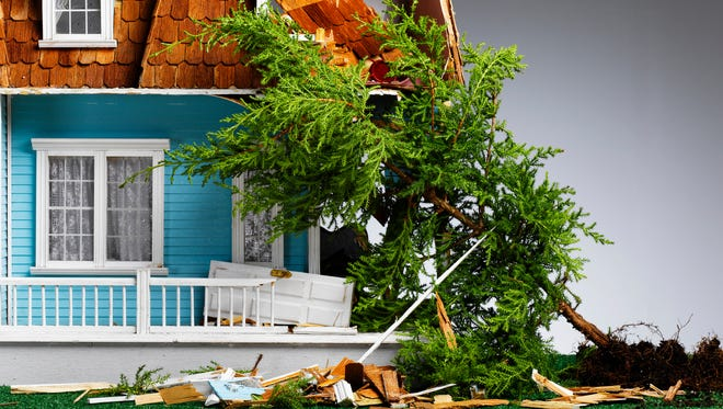 If your neighbor's tree falls and damages your home like in this illustration, you are responsible in most cases.