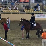Kyle Dutiel of Brandon won the gold medal in equitation at the Special Olympics World Games in Los Angeles.