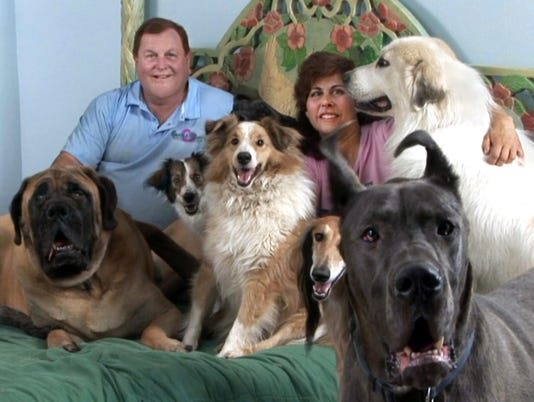 636080712169119610-1.-Burt-and-Tracy-Ward-in-their-bedroom-surrounded-by-just-a-few-of-their-rescue-dogs---provided-by-Burt-Ward.jpg