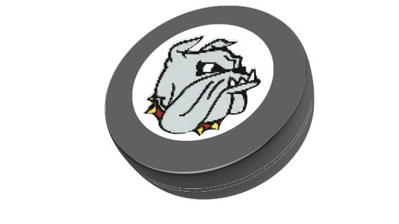 UMD puck logo