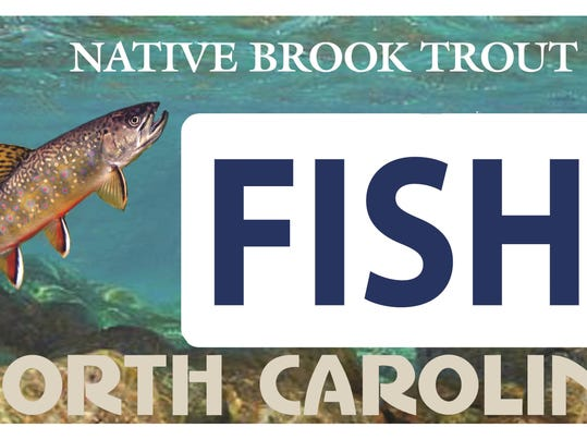 New specialty plate to help save brook trout for Florida temporary fishing license