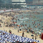 Earth roasts through hottest summer ever recorded
