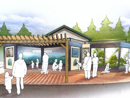 A concept drawing of a new otter exhibit at the Pine