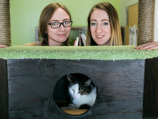 The Cafe Meow owners Danielle Rasmussen, left, and