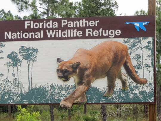 This sign greets visitors to the  Florida Panther National Wildlife Refuge.