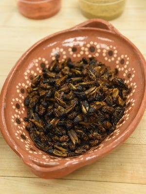 A view of the crickets used in a recipe at The Culinary Institute of America in Hyde Park.