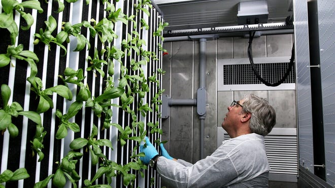An example of a Freight Farms Greenery container farm.