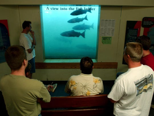 The fish-viewing room at the ladder at Bonneville Dam.